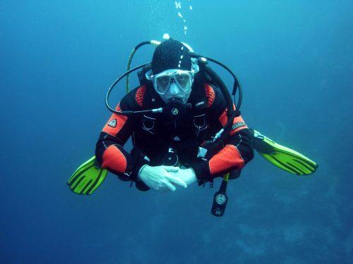 Aquarium pour la plongée à Ada Ciganlija à Belgrade
