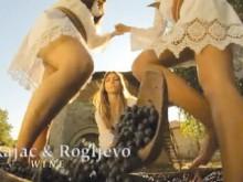 La Serbie à travers la gastronomie (vidéo)