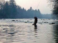 Posavina, un paradis pour la chasse et la pêche