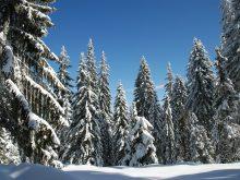 Pamporovo, la station de ski au soleil