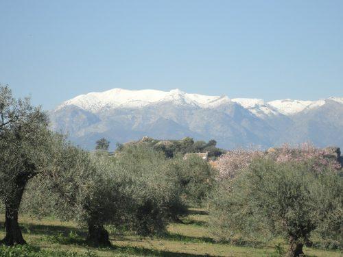L'Andalousie en hiver