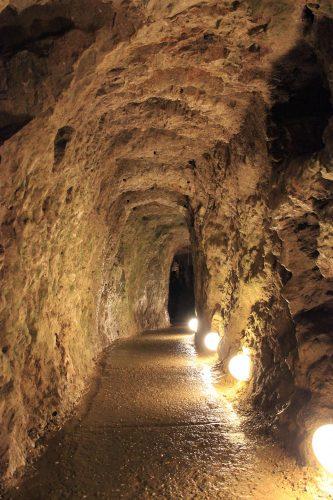 La grotte de Resavska